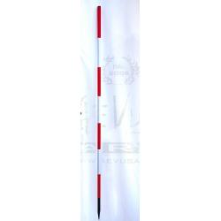 Palina geodetica