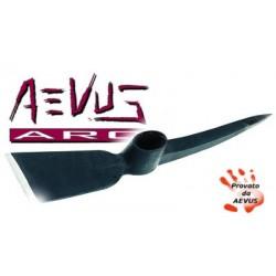 AEV59